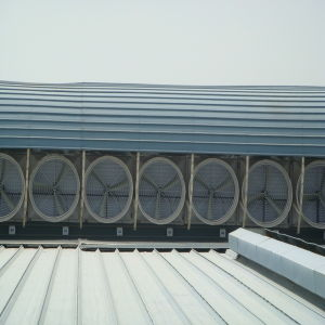 Attic Vent Fan for Industrial / Roof Ventilation/ Roof Ventilator (OFS-146SS) pictures & photos