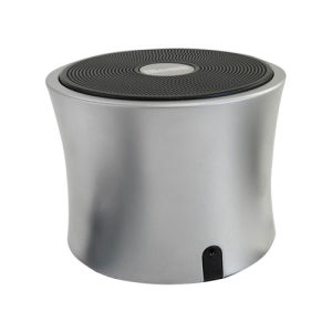 Portable Bluetooth Speaker with FM Function