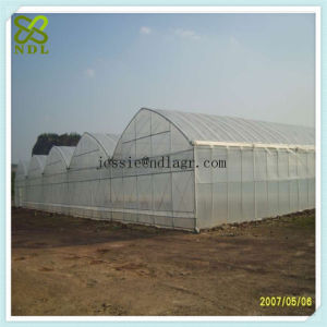 Industrial Electricity Film Green Houses pictures & photos