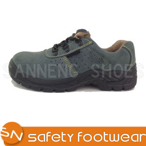 Trainer Safety Shoes with Steel Toe Cap (SN1631) pictures & photos