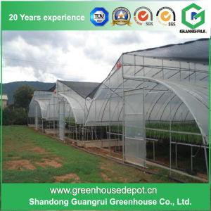 2017 Multi-Span Plastic Greenhouse with Hydroponic System pictures & photos