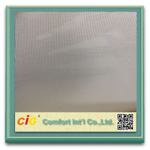 High Quality 30%Polyester 70%PVC Sunscreen Curtain pictures & photos