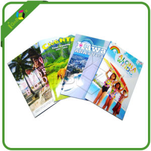 Professional Pamphlet Leaflet Flyer Booklet Brochure Printing pictures & photos