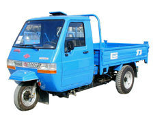 1t 195 Diesel Engine Tricycle Transporter