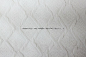 Polyester Chiffon Embossed Fabric for Ladies′ Garment pictures & photos