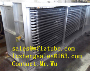 Fin Tube Heat Exchanger P355nl1, Fins Heat Exchanger En10216-3, Fin Tube P355n pictures & photos