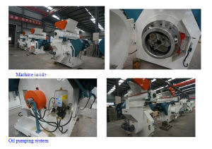 Competitive Price Sawdust Pellets Making Machine 0086 15238032864 pictures & photos