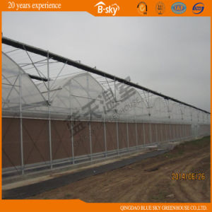 Extensively Used High Quality Single-Layer Film Greenhouse pictures & photos