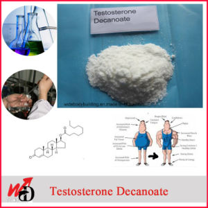 Raw 10161-34-9 Healthy Pharmaceutical Steroids Trenbolone Acetate for Bodybuilding pictures & photos
