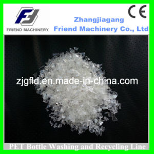 Pet Bottle Recycle and Washing Plant with CE pictures & photos