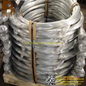 Pre-Tied Galvanized Black Annealed Hanger Wire Single Loop Bale Ties pictures & photos
