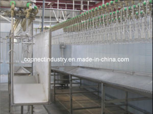 Poultry Abattoir Machine