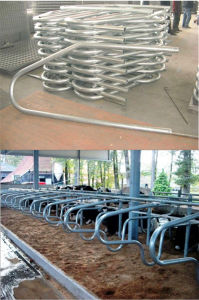 Galvanized Cow Steel Fence pictures & photos