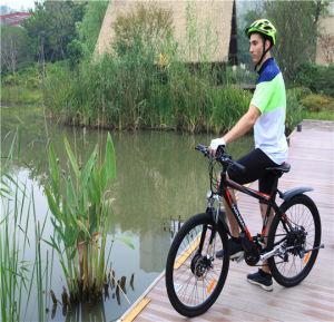 Fashion Electric Bike Electric Mountain Bike pictures & photos