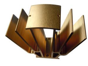 Customized Aluminum/Aluminium Extrusion for Construction (ZY-5-4-1) pictures & photos