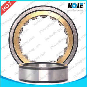 Auto Part Cylindrical Roller Bearing Nu336, Nu2336, Nup236, Nj238