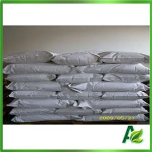 Manufacture Food Grade Preservative Calcium Propionate Powder and Granular pictures & photos