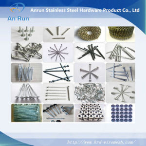 Galvanised Ring Shank Nail/Coil Roofing Nails pictures & photos