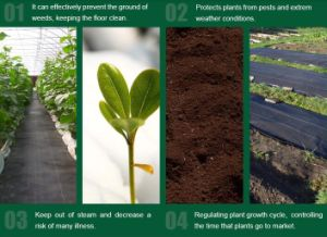 Agriculture PP Weed Mat Manufacturer pictures & photos