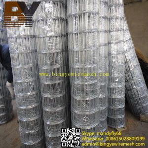 Concrete Hot-Dipped Galvanized Welded Wire Mesh pictures & photos