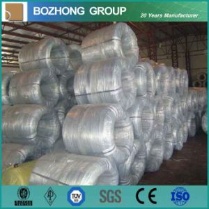 High Quality Galvanized Steel Wire -----Suitable for Hanging Communication Cable pictures & photos