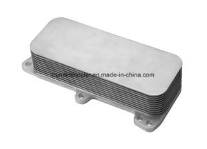 Oil Cooler for Vwtouareg 03 - 10transporter 03 -10 (070 117 021 D) pictures & photos