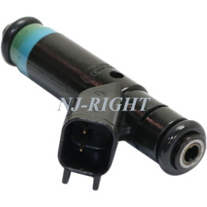 High Performance Fuel Injector/ Injector/ Fuel Nozzel Rl854181/ 4854181 for Jeep/ Dodge pictures & photos