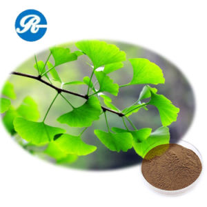 Whitening and Anti-Wrinkle Ginkgo Biloba Extract pictures & photos