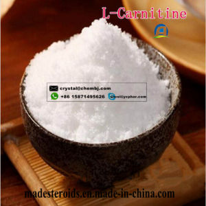 Weight Loss Raw Steroids L-Carnitine for Nutrition and Health Care CAS 541-15-1 pictures & photos