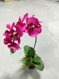 High Quality of Artificial Flowers Orchid 8008-A3 pictures & photos