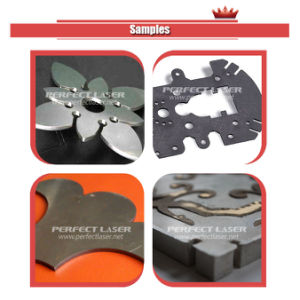 200W 300W 500W 1000W 2000W Fiber Metal Laser Cutter pictures & photos