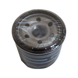 Oil Filter (B6Y1-14-302) pictures & photos