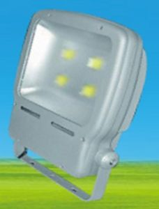 LED COB Floodlight, Flood Light, COB Outdoor Lighting pictures & photos