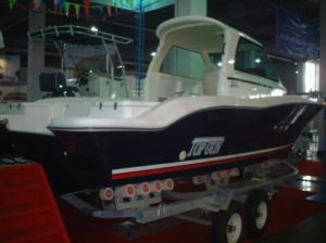 Dafman 760zx Fishing Boat pictures & photos