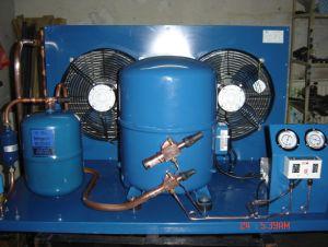 Danfoss Air Cooled Compressor (LLPC) pictures & photos