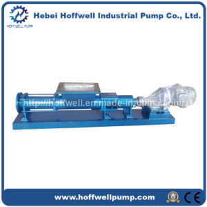CE Approved G Positive Displacement Single Screw Pump pictures & photos