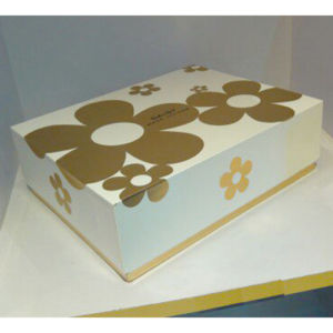Paper Packing Box (PBX39)
