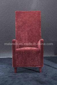 Hotel/Leisure Chair (B59)