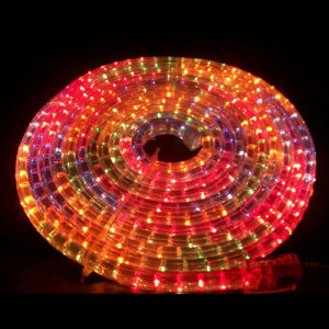 LED Rope Light (Flat 3 Wires) pictures & photos