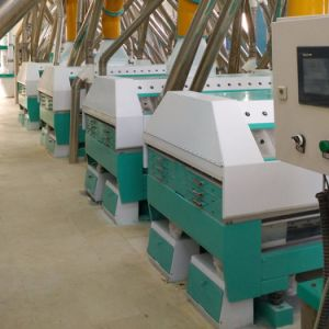 300t/24h European Standard Wheat Flour Mill Machines pictures & photos
