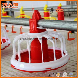 Poultry Equipment with Prefab House Construction for One-Stop pictures & photos