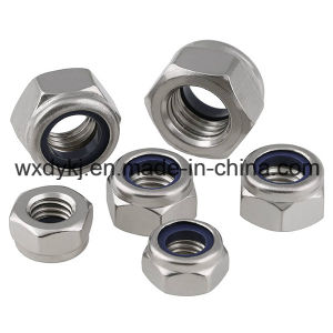 Stainless Steel 304 316 Nylon Insert Lock Nut pictures & photos