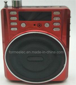 FM Radio USB Card Multi Media Portable Amplifier Loudspeaker pictures & photos