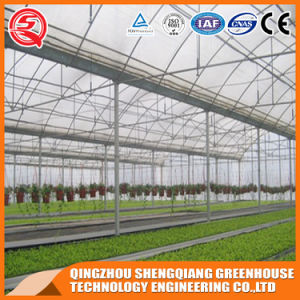 Agriculture Indoor Growing Tent Plastic Film Green House with Hydroponic System pictures & photos