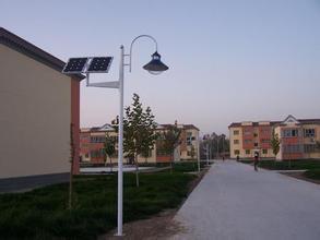 Outdoor High Bright Bridgelux LED Chip Garden Solar Light Ball