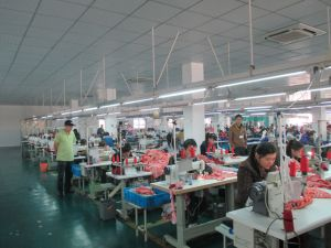 Factory Evaluation (FE) Service to Your New Suppliers pictures & photos