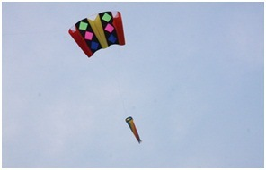 Soft Pull Big Kite Wholesale Easygroup Contracted Kite pictures & photos