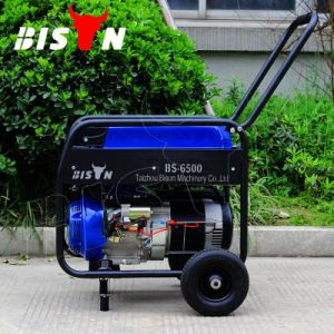 Bison (China) BS6500e 5kw AC Three Phase Portable New Generator pictures & photos