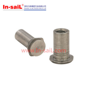 Carbon Steel Concealed-Head Self-Clinching Standoffs pictures & photos