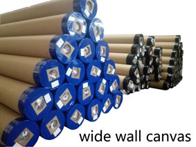 Super Wide Eco Solvent Wall Canvas Polyester Matt pictures & photos